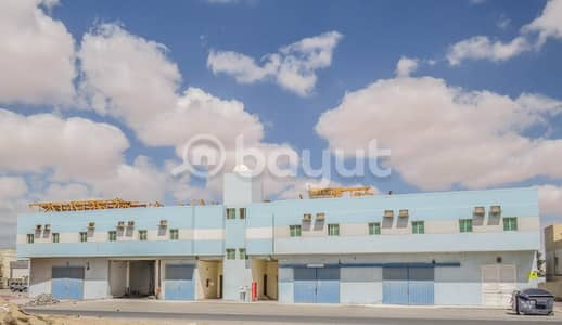 Office for Rent in Al Jurf, Ajman - No Commission | Spacious offices with Labour accomodation