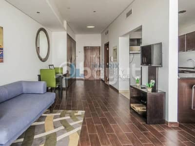 Luxurious furnished studio Matrix AED 45k / 6 chqs