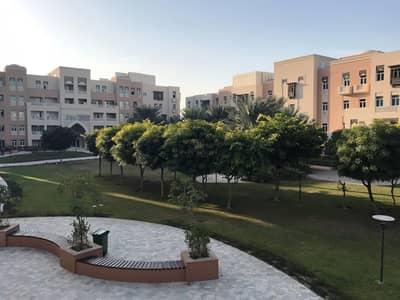 فلیٹ 3 غرف نوم للبيع في الفرجان، دبي - Fully Upgrade 3BR+M Close Kitchen Facing Garden