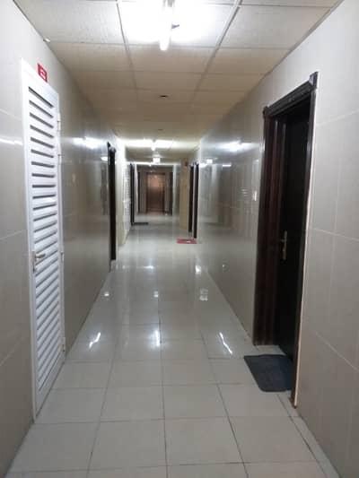 استوديو  للايجار في تجارية مويلح، الشارقة - شقة في تجارية مويلح 12000 درهم - 4322204