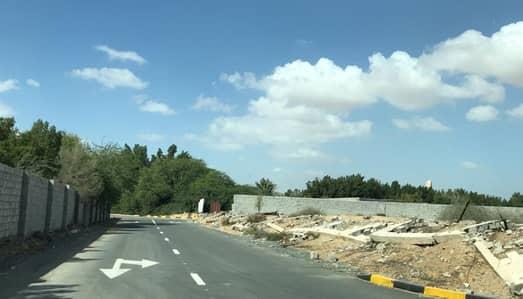 ارض سكنية  للبيع في الياسمين، عجمان - لكافة الجنسيات أراضي سكنية بسعر 189 ألف شامل جميع الرسوم بمنطقة مميزة