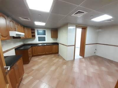 فلیٹ 3 غرفة نوم للايجار في النهدة، دبي - شقة في النهدة 2 النهدة 2 غرف 50000 درهم - 4284465
