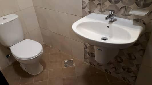 فلیٹ 2 غرفة نوم للايجار في منطقة النادي السياحي، أبوظبي - شقة في منطقة النادي السياحي 2 غرف 54998 درهم - 4341917