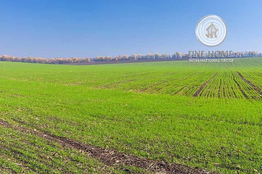 Wonderful Farm in Liwa ?Area. Western Region