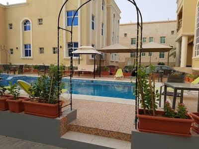 استوديو  للايجار في مدينة شخبوط (مدينة خليفة ب)، أبوظبي - شقة في مدينة شخبوط (مدينة خليفة ب) 32000 درهم - 4347647