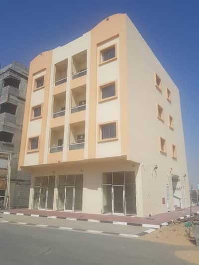 1 Bedroom Flat for Rent in Al Aaliah, Ajman - Ajman High Area