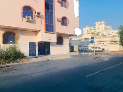 فلیٹ 1 غرفة نوم للايجار في النعيمية، عجمان - غرفة نوم واحدة شقة للإيجار النعيمية
