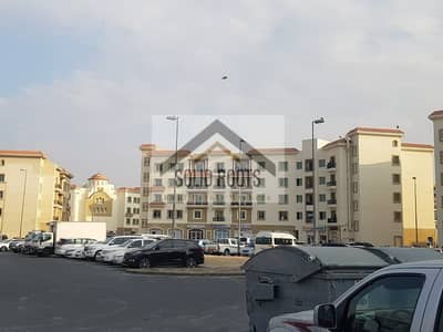 Shop for Rent in International City, Dubai - Fully Ready Shop in Greece Cluster -Location for  any kind of business