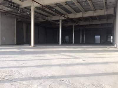 معرض تجاري  للايجار في البرشاء، دبي - HOT DEAL | 13