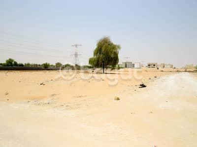 ارض سكنية  للبيع في الياسمين، عجمان - تملك ارضك فى الياسمين اقساط على 20 شهر