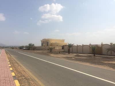 ارض سكنية  للبيع في المنامة، عجمان - تملك ارض سكنية فى المنامة فقط 125 الف بالاقساط  24 شهر