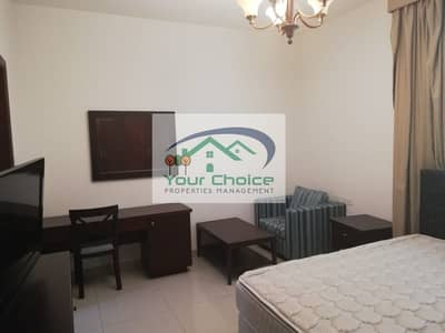 Modern and Dazzling Fully Furnished Studio