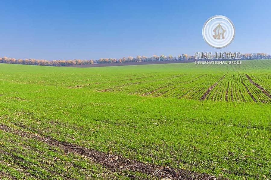 22 Amazing Farm with 490 palm in Nahel Area