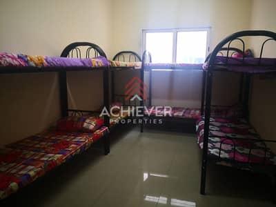 سكن عمال  للايجار في جبل علي، دبي - Hot Deal!!! 325 per Labor/Month | All inclusive