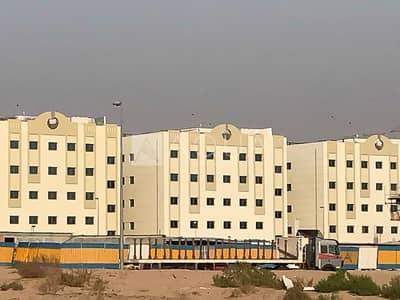 سكن عمال  للايجار في الخوانیج، دبي - Brand New Labor Camp in Khawneej 2