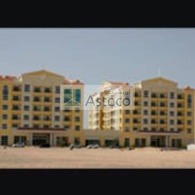 2 BR Phase 2 Al Jawzaa| Up to 4 Cheques