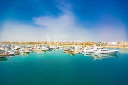 2 Bedroom Flat for Sale in Palm Jumeirah, Dubai - Full Sea