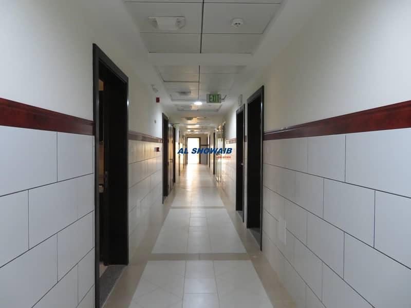 11 | Brand New  | 3 Bedroom | Hall | 4 BATH | Al Muteena | Deira |