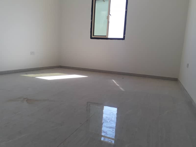 Brand new two-room apartment and hall with roof