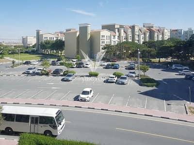 شقة 1 غرفة نوم للايجار في ديسكفري جاردنز، دبي - Close to Metro | 1BR | Discovery Gardens