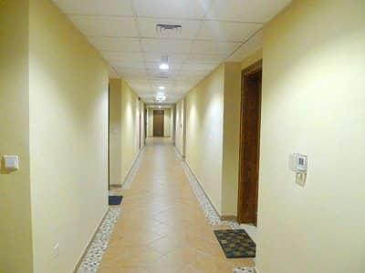 Amazing 3BR with Maid's Room available for rent in Ghoroob