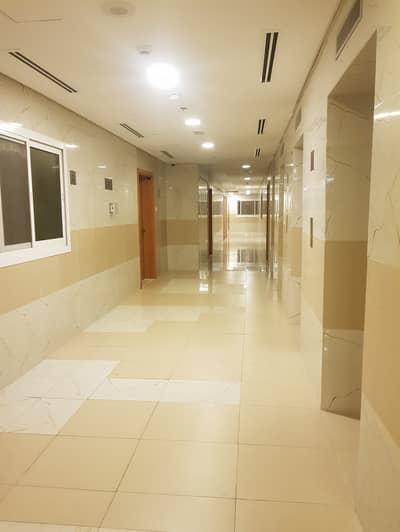 فلیٹ 2 غرفة نوم للايجار في النهدة، دبي - شقة في النهدة 1 النهدة 2 غرف 70000 درهم - 4284303