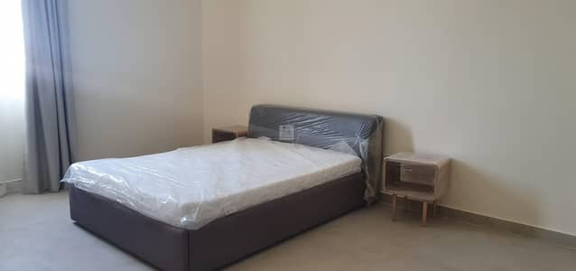 2 bed room fully furnished spacious apartment