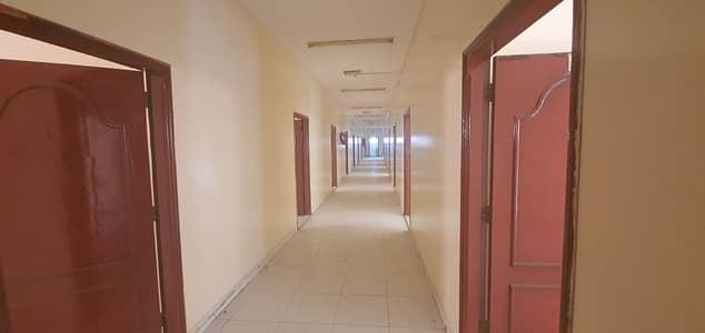 Labour Camp for Rent in Al Jurf, Ajman - 32 labour camp for rent in Ajman 8 person capacity only for 850/ AED