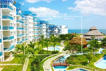 1 Bedroom Apartment for Sale in Pearl Jumeirah, Dubai - Spectacular 2BR- Nikki Beach - Private Island