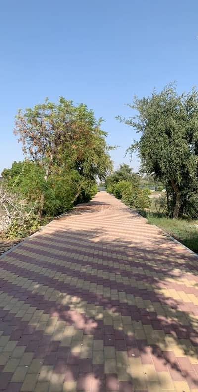 Other Commercial for Sale in Al Raha Beach, Abu Dhabi - Farm For Sell, Please Call Me For More Viewing