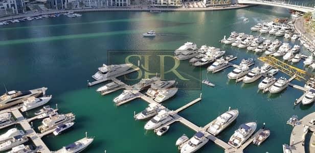 شقة 1 غرفة نوم للايجار في دبي مارينا، دبي - Chiller Free | Large 1 Bedroom | Close to metro | 1 Month Free