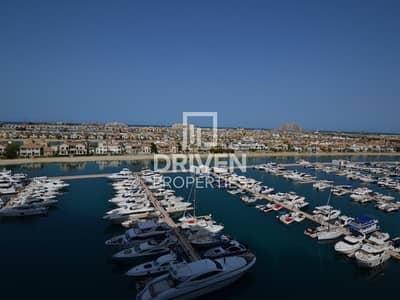 شقة 2 غرفة نوم للايجار في نخلة جميرا، دبي - 2 Bed apt with Full Sea and Atlantis View