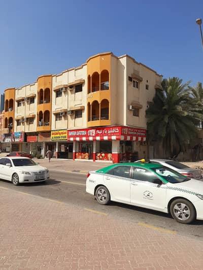 شقة 2 غرفة نوم للايجار في منطقة الكرامة، عجمان - شقة في منطقة الكرامة 2 غرف 22000 درهم - 4497468