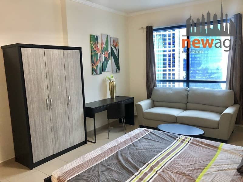 Furnished Spacious Studio Near Metro For Rent