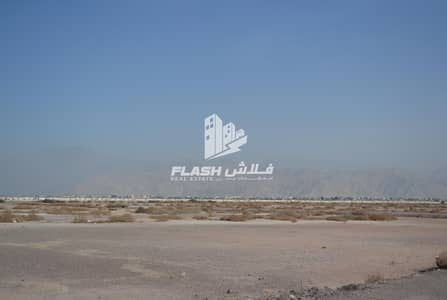 Plot for Sale in Al Mairid, Ras Al Khaimah - FREE-HOLD PLOTS G+1 VILLA I NEAR MARRIOT