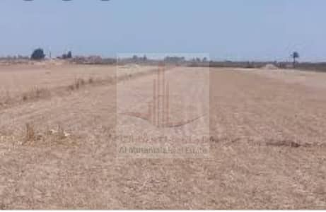A plot of land in the Rawda area