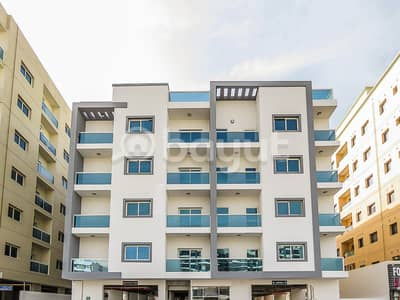 2 Bedroom Flat for Rent in Al Warqaa, Dubai - Spacious Brand New 2 BR With 3 Balconies Plus Big Hall Flat For Rent