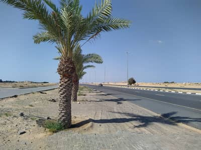 Plot for Sale in Al Jurf, Ajman - Hot Deal Ready to Built Villa Plot prime location in Al jurf 1