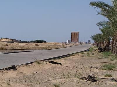ارض سكنية  للبيع في الجرف، عجمان - ارض سكنية في الجرف 431800 درهم - 4519196