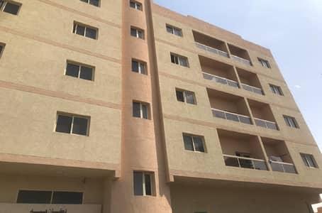 استوديو  للايجار في النعيمية، عجمان - شقة في النعيمية 1 النعيمية 14000 درهم - 4519225