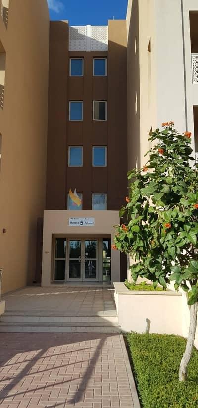 شقة 2 غرفة نوم للايجار في واجهة دبي البحرية، دبي - 2 Bedroom Apartment | For Rent | Dubai Waterfront