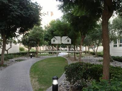 استوديو  للايجار في الروضة، دبي - Studio in Al Thayyal 3 with Street View.