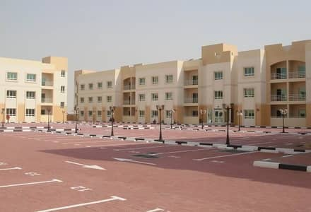1 Bedroom Apartment for Rent in Dubai Silicon Oasis, Dubai - Affordable 1 Bedroom | Living at Silicon Residence