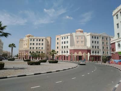 1 Bedroom Apartment for Sale in International City, Dubai - England Cluster rented one bedroom with out balcony round about building price 345000/- net