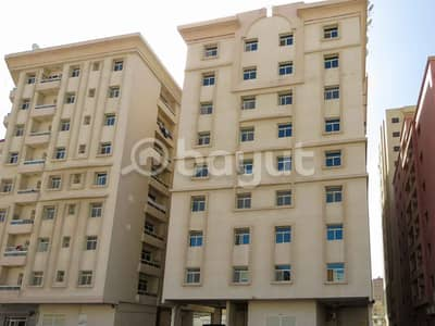 1 Bedroom Flat for Rent in Al Nuaimiya, Ajman - One Bedroom+ Hall For Rent - without commission - very close to Al Hikma school - very close to the Emirates market - close to Royal Furniture - opposite to Al-Saeedi Grand Mosque in Al-Naimiya
