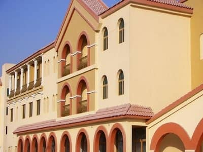 1 Bedroom Apartment for Rent in International City, Dubai - 1 BEDROOM AVAILABLE FOR RENT IN SPAIN CLUSTER