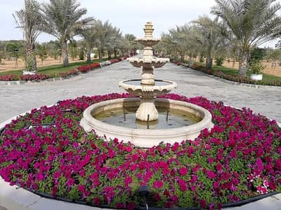 Other Commercial for Sale in Al Rahba, Abu Dhabi - For sale farm vip in Al Rahba Abudhabi,