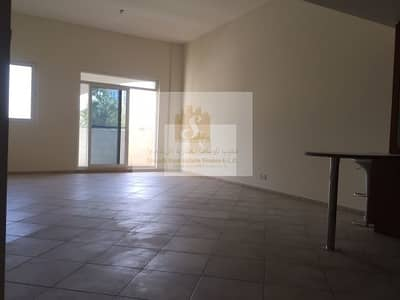 Ground Floor Large And Spacious 1B/R For Rent