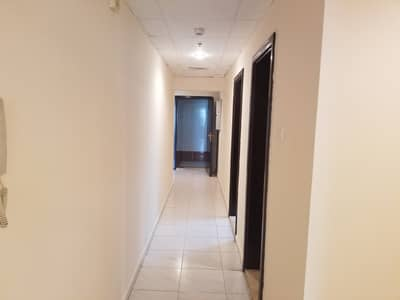 3 Bedroom Apartment for Rent in Al Nahda, Dubai - HUGE SIZE LUXURY 3BHK SPECIALLY ALLOWED FOR EXECUTIVE BACHELORS 5 MINTS TO STADIUM METRO ONLY IN 60K