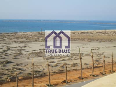 Studio for Rent in Al Hamra Village, Ras Al Khaimah - CHEAPEST STUDIO FOR RENT IN ROYAL BREEZE 2